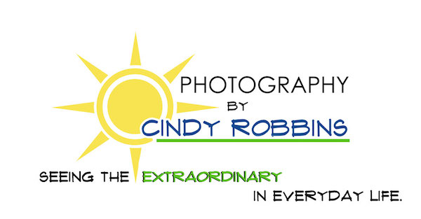 Denville, NJ Photographer, Mountain Lakes, NJ Photographer – Cindy Robbins  logo